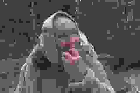 Cụ bà ăn đất để trị bệnh ung thư não