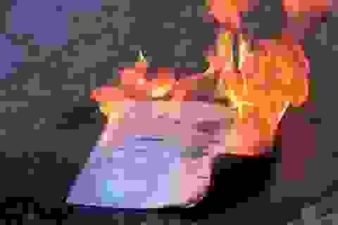 Cử nhân đốt bằng tốt nghiệp gửi thư xin lỗi trường