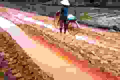 Quảng Bình: Dân khổ sở vì đường liên xã lầy lội, xuống cấp nghiêm trọng!