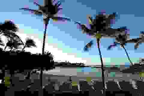 """Truy cập trang web """"người lớn"""" tăng đột biến sau vụ báo động nhầm tên lửa ở Hawaii"""