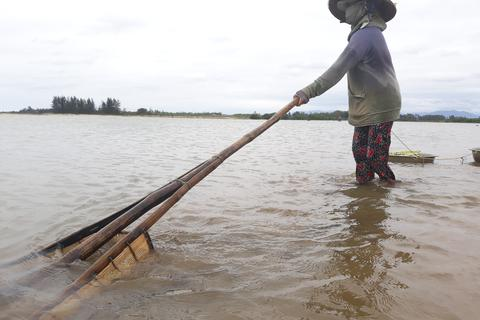 Quảng Ngãi: Nhọc nhằn đãi cát tìm hến nơi cửa sông