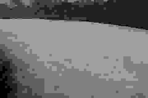 Kinh hãi dòng kênh nổi bọt trắng xóa như băng tuyết