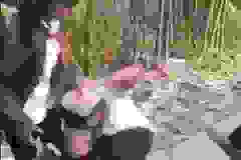 Nam sinh lớp 8 bị nhóm nữ sinh đánh hội đồng