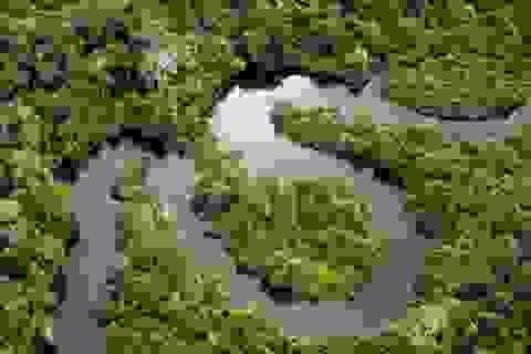 Những địa điểm du lịch nổi tiếng đang dần biến mất vì thay đổi khí hậu