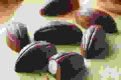 Có một ngày thế giới sẽ không còn socola
