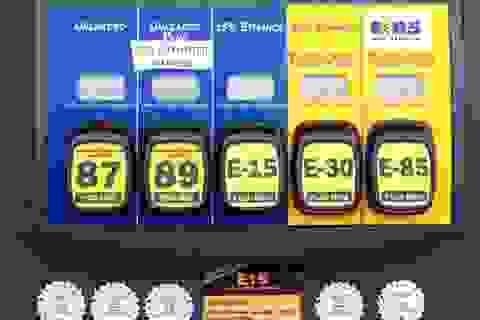 Những điều cần biết về xăng E5