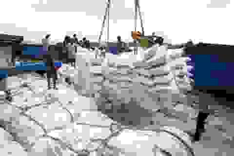 Doanh nghiệp Việt đang tồn hơn 760.000 tấn gạo trong kho