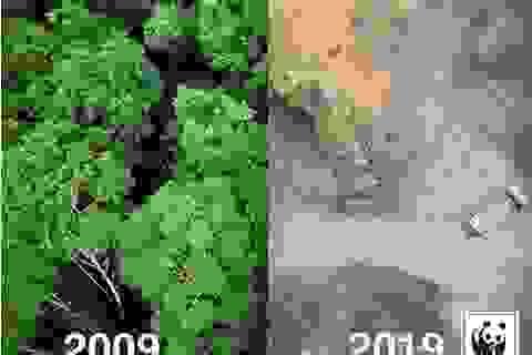 """""""Thử thách 10 năm"""" của Trái Đất: Hiện thực tàn khốc!"""