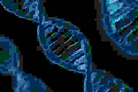 Thiếu ngủ và thức giấc vào ban đêm có nguy cơ làm hỏng cấu trúc DNA