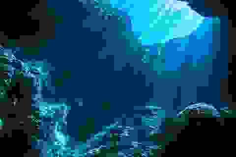 Khu vực đáy biển bí ẩn xa xôi cuối cùng cũng đã được khám phá