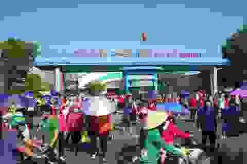 Khoảng 4.000/10.000 công nhân mất việc ở Trà Vinh đã được tuyển dụng