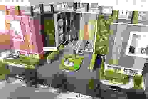 Khi cây xanh mọc trên bê tông cốt thép - giải pháp kiến trúc đột phá hoà hợp giữa Thiên nhiên và Con người!