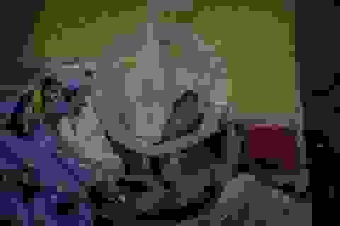 """Người bệnh Venezuela mắc kẹt """"cuộc chiến"""" hàng viện trợ nảy lửa"""