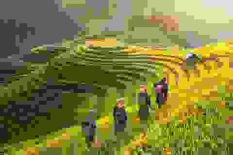 Cảnh sắc Việt Nam quyến rũ và thân thương trên hàng loạt các trang báo nước ngoài