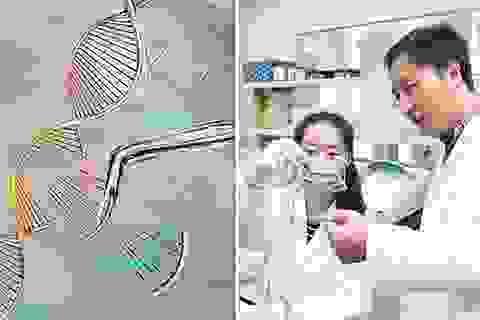 """Các em bé biến đổi gene có thể thành… """"siêu nhân"""" với bộ não được tăng cường"""