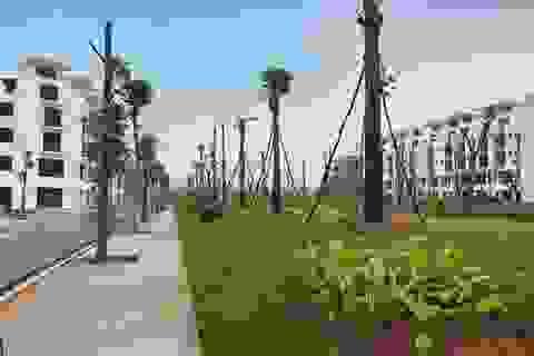 """Tiến độ dự án Khai Sơn Town tiếp tục """"ghi điểm"""""""