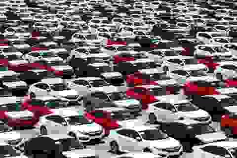 8.000 ôtô nhập khẩu cập cảng trong tháng 2/2019