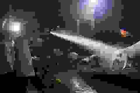 3h30' sáng, Chủ tịch tỉnh đột xuất kiểm tra việc phòng chống dịch tả lợn Châu Phi