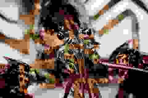 Dùng động vật biển để phát hiện... tàu ngầm