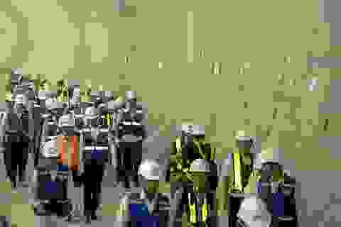 TPHCM khẩn trương kiện toàn nhân sự tại BQL Đường sắt đô thị