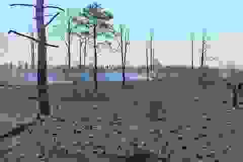 """Đắk Nông: Đất rừng dọc quốc lộ bị """"xẻ thịt"""", cơ quan chức năng bất lực?"""