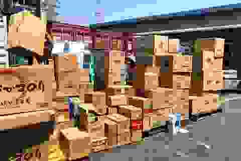 """Hoàn tất hồ sơ khởi tố vụ doanh nghiệp """"ma"""" nhập cả container hàng lậu"""