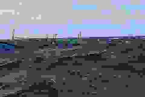 Hội Nghề cá phản đối Trung Quốc gây chìm tàu của ngư dân Việt Nam