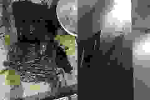 """Một phóng viên bị ném """"bom bẩn"""" vào nhà"""