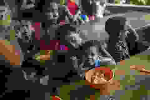 """Cuộc sống """"chạy ăn từng bữa"""" của người Venezuela giữa thời khủng hoảng"""