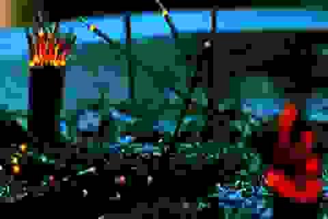 """""""Nóng"""" câu chuyện về đức tin và tôn giáo xung quanh vụ việc ở chùa Ba Vàng"""