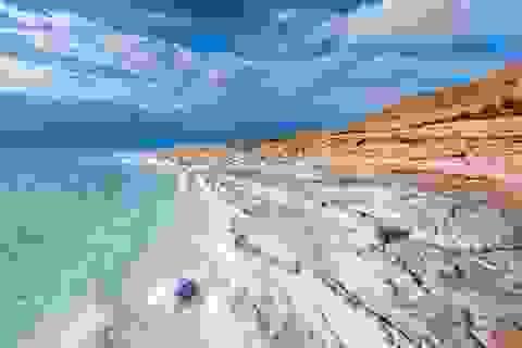 Các vi khuẩn cổ đại đã ăn các xác chết của nhau để sống sót dưới Biển Chết