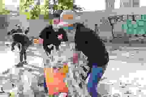 H'hen Niê, Tiểu Vy cùng dàn người đẹp xuống đường nhặt rác dưới nắng 39 độ