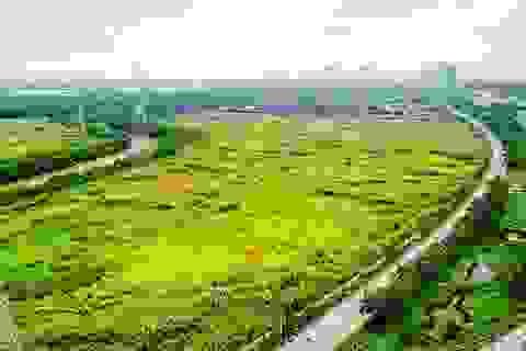 TPHCM: Giá nhà đất thực tế gấp 4-6 lần bảng giá đất