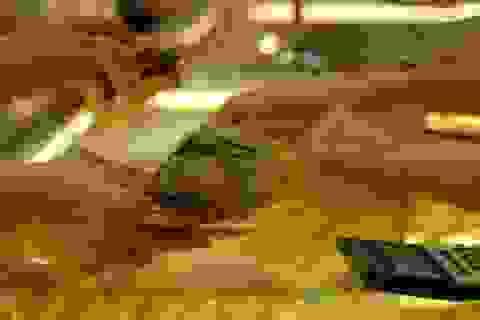 Giá vàng giảm mạnh nhất 4 tháng