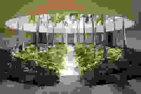 """Chiêm ngưỡng dinh thự độc đáo sở hữu cả """"ốc đảo"""" ngay giữa nhà"""