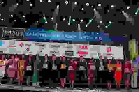 Dai-ichi Life Việt Nam với hệ sinh thái nhân tài bền vững