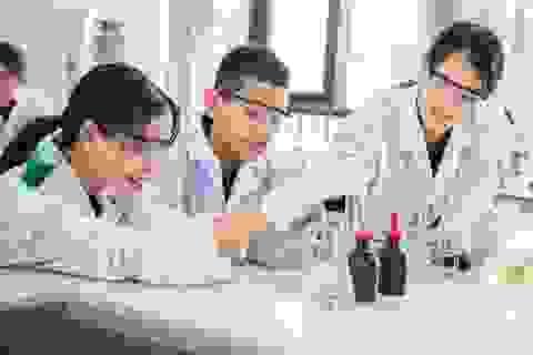 """Cơ hội cho trường học Việt Nam vươn tới """"Đẳng cấp quốc tế"""""""