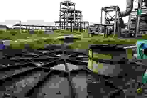 Kẹt nghìn tỷ với thầu Trung Quốc, Gang thép Thái Nguyên nguy cơ phá sản