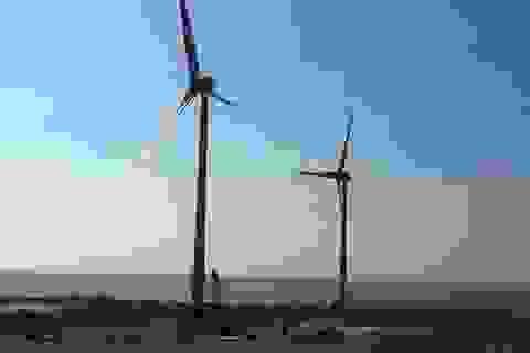 Ninh Thuận khánh thành nhà máy điện gió thứ 2 trị giá gần 1.500 tỷ đồng
