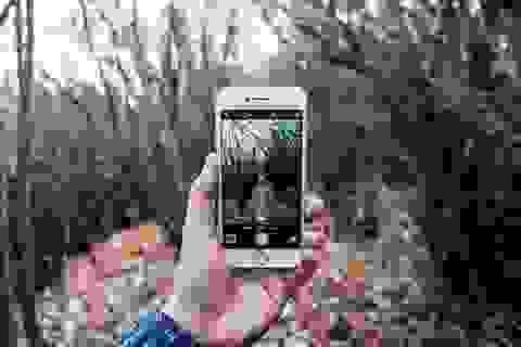 Ảnh chụp bằng iPhone 6 giành giải nhất trong cuộc thi ảnh tại Mỹ