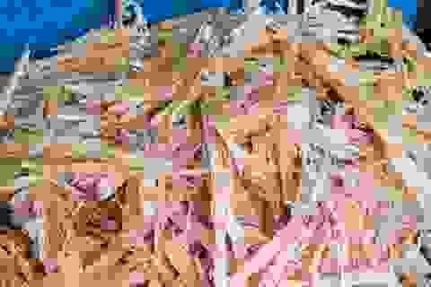 1m2 thu ròng 3 triệu đồng: Bộ trưởng Nông nghiệp hiến kế làm giàu cho dân