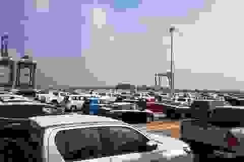 """Chiếm trên 95% thị trường, xe Thái, Indonesia """"thống trị"""" chợ xe nhập Việt"""