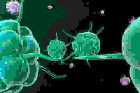 Thừa canxi trong cơ thể có thể dẫn đến ung thư