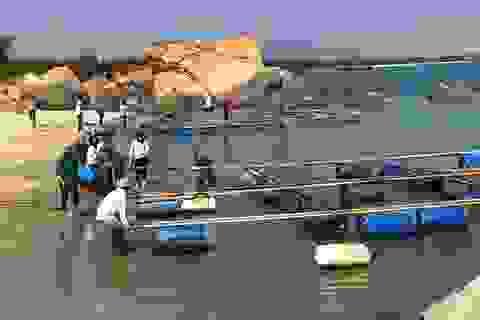 Quảng Ngãi:  Gần 10 tỷ đồng hỗ trợ người nuôi cá chuyển đổi nghề