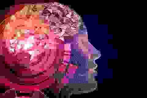 Tỷ phú Elon Musk phát triển máy tính có thể kết nối với não bộ con người
