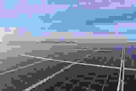 BIM Group chính thức khánh thành cụm 3 nhà máy điện mặt trời 330 MWP
