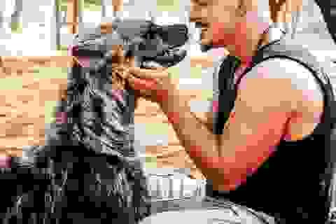 Chàng trai Thụy Sĩ bỏ việc và bán tất cả tài sản để giúp đỡ... động vật hoang dã