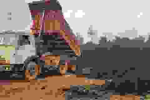 Khai thác trái phép cả ngàn m3 than bùn, một doanh nghiệp bị phạt 120 triệu đồng