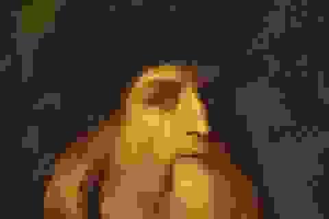 Tìm thấy bức chân dung thứ hai của danh họa Leonardo da Vinci