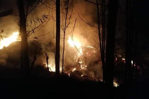 Nửa tháng xảy ra 6 vụ cháy rừng, 1 người chết